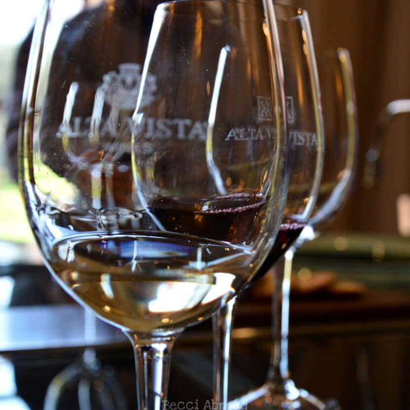 8 practical tips that will help you get the most out of your visit to the wineries in Mendoza