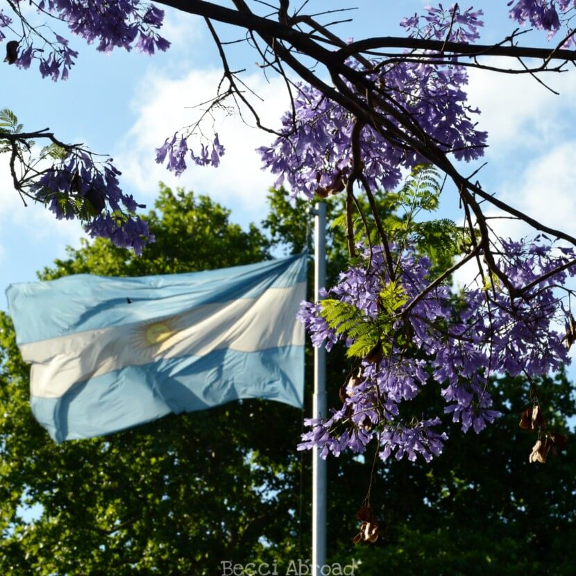 Reasons why November is the best time to visit Buenos Aires